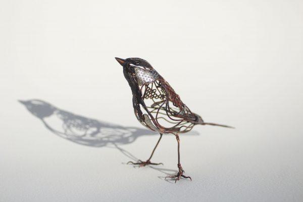 Rachel Higgins `Sparrow`